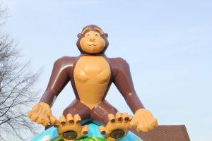 Springkussen Monkey word geschonken door Attractieverhuur De Toren.