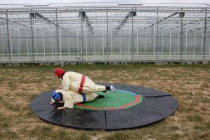 Sumoworstelen;bedoeling is om de tegenstander op de sumo-mat omver te duwen.