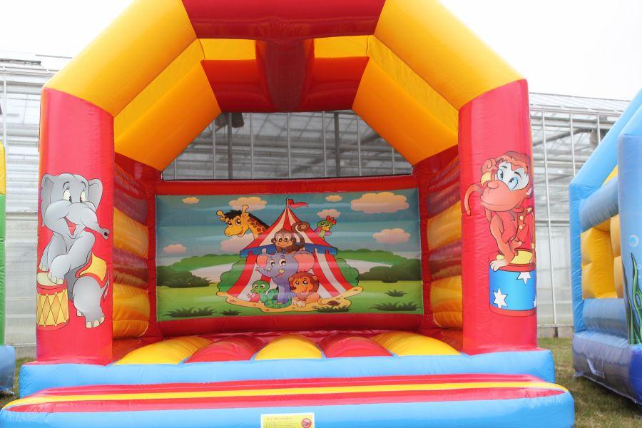 Springkussen Circus met prachtig full collour print!