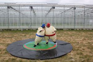 Deze sumo pakken huur je voordelig bij Attractieverhuur De Toren.